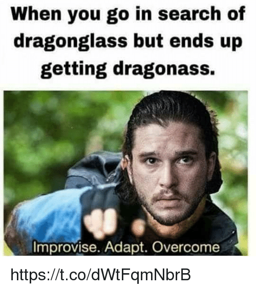 Memes, Search, and 🤖: When you go in search of  dragonglass but ends up  getting dragonass.  Improvise. Adapt. Overcome https://t.co/dWtFqmNbrB