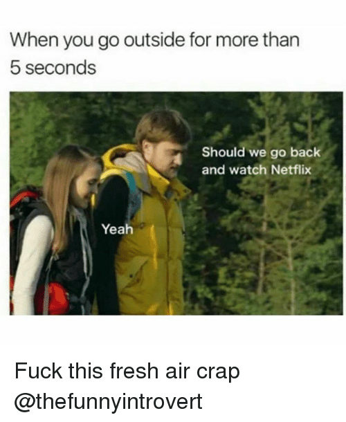 Fresh, Funny, and Netflix: When you go outside for more than  5 seconds  Should we go back  and watch Netflix  Yeah Fuck this fresh air crap @thefunnyintrovert