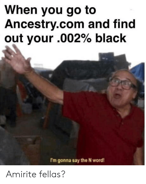 ancestry.com: When you go to  Ancestry.com and find  out your .002% black  rm gonna say the N word Amirite fellas?