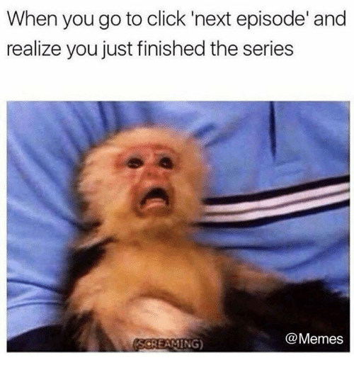 Click, Dank, and Memes: When you go to click 'next episode' and  realize you just finished the series  @Memes  SCREAMING