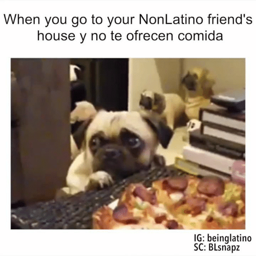 Memes, 🤖, and Y-No: When you go to your NonLatino friend's  house y no te ofrecen comida  IG: beinglatino  SC: BLsnapz