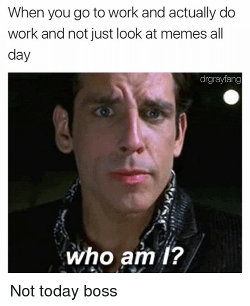 Memes, Who Am I, and Work: When you go towork and actually do  work and not just look at memes all  day  drgrayfang  who am I? Not today boss