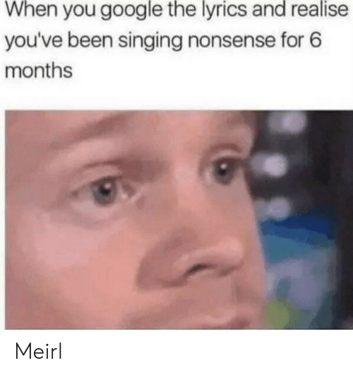 Lyrics: When you google the lyrics and realise  you've been singing nonsense for 6  months Meirl