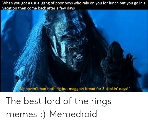 """Funny Lord Of The Rings: When you got a usual gang of poor boys who rely on you for lunch but you go in a  vacation then come back after a few days  We haven't had nothing but maggoty bread for 3 stinkin' days!"""" The best lord of the rings memes :) Memedroid"""