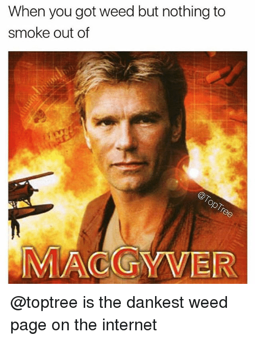 Dankest Weed: When you got weed but nothing to  smoke out of  MACGYVER @toptree is the dankest weed page on the internet