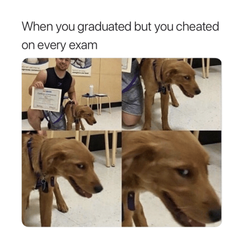 Cheated On: When you graduated but you cheated  on every exam