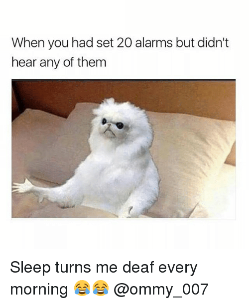 Dekh Bhai, International, and Sleep: When you had set 20 alarms but didn't  hear any of them Sleep turns me deaf every morning 😂😂 @ommy_007