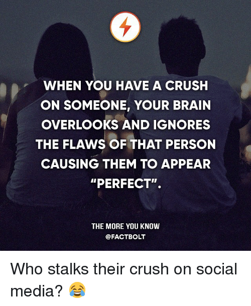 """Crush, Memes, and Social Media: WHEN YOU HAVE A CRUSH  ON SOMEONE, YOUR BRAIN  OVERLOOKS AND IGNORES  THE FLAWS OF THAT PERSON  CAUSING THEM TO APPEAR  """"PERFECT"""".  THE MORE YOU KNOW  @FACT BOLT Who stalks their crush on social media? 😂"""