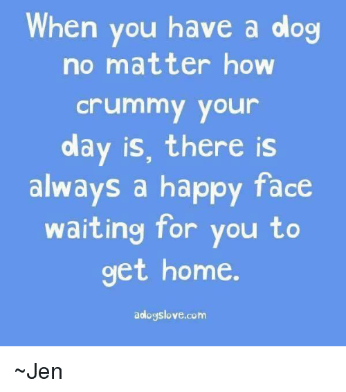 Memes, Happy, and Home: When you have a dog  no matter how  Crummy your  olay is, there is  always a happy face  waiting for you to  get home  aologslove.com ~Jen