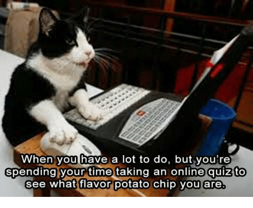 🤖: When you have a lot to do, but you're  spending your time taking an online quiz to  see what flavor potato chip you are