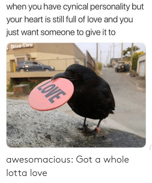 drive thru: when you have cynical personality but  your heart is still full of love and you  just want someone to give it to  Drive-Thru  LOVE awesomacious:  Got a whole lotta love