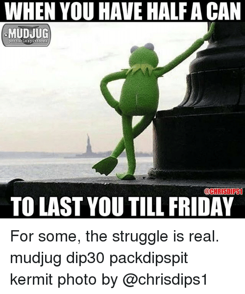 Friday, Memes, and Struggle: WHEN YOU HAVE HALF A CAN  MUDJUG  portable spittoo  CHRISDIPS  TO LAST YOU TILL FRIDAY For some, the struggle is real. mudjug dip30 packdipspit kermit photo by @chrisdips1