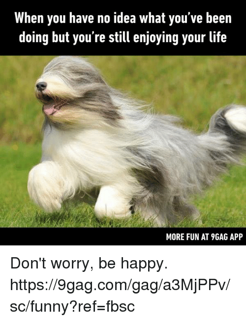 9gag, Dank, and Funny: When you have no idea what you've been  doing but you're still enjoying your life  MORE FUN AT 9GAG APP Don't worry, be happy.  https://9gag.com/gag/a3MjPPv/sc/funny?ref=fbsc