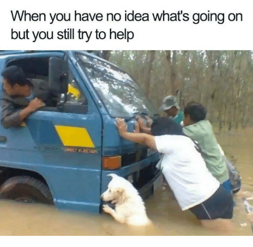dank: When you have no idea what's going on  but you still try to help