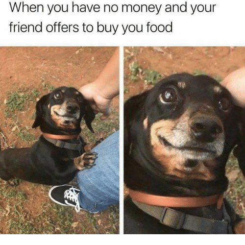Food, Money, and Friend: When you have no money and your  friend offers to buy you food