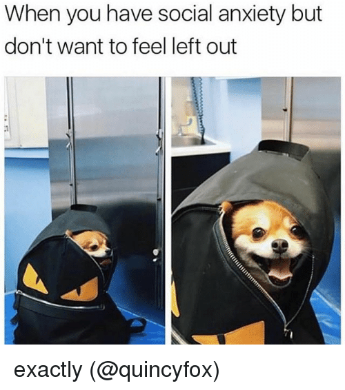 Memes, Anxiety, and 🤖: When you have social anxiety but  don't want to feel left out exactly (@quincyfox)