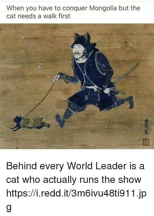 World, Mongolia, and Cat: When you have to conquer Mongolia but the  cat needs a walk first Behind every World Leader is a cat who actually runs the show https://i.redd.it/3m6ivu48ti911.jpg