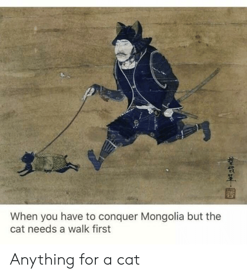 Mongolia: When you have to conquer Mongolia but the  cat needs a walk first Anything for a cat
