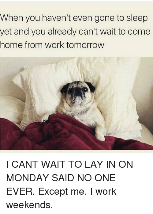Lay's, Memes, and Coming Home: When you haven't even gone to sleep  yet and you already can't wait to come  home from work tomorrow I CANT WAIT TO LAY IN ON MONDAY SAID NO ONE EVER. Except me. I work weekends.