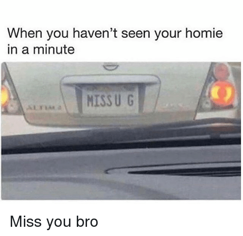 Homie, Memes, and 🤖: When you haven't seen your homie  in a minute  MISS U G Miss you bro