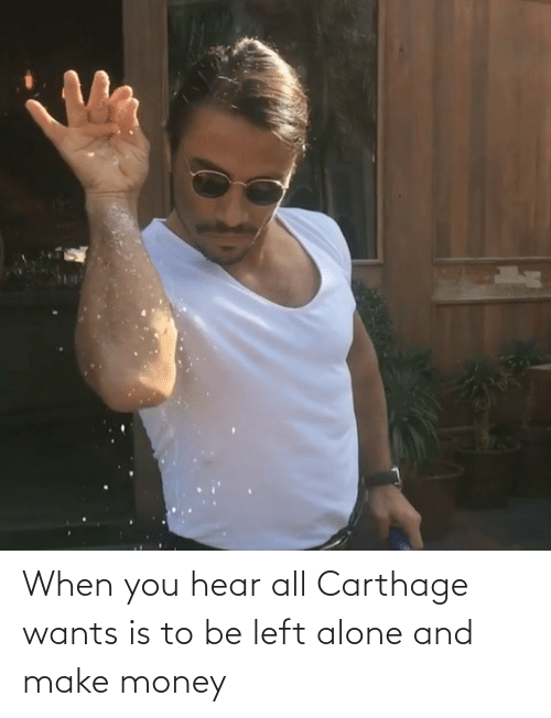carthage: When you hear all Carthage wants is to be left alone and make money
