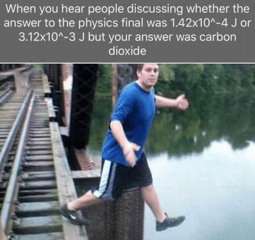 carbon dioxide: When you hear people discussing whether the  answer to the physics final was 1.42x10^-4 J or  3.12x10^-3 J but your answer was carbon  dioxide