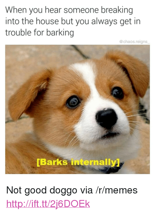 """Memes, Good, and House: When you hear someone breaking  into the house but you always get in  trouble for barking  @chaos.reigns  [Barks internally <p>Not good doggo via /r/memes <a href=""""http://ift.tt/2j6DOEk"""">http://ift.tt/2j6DOEk</a></p>"""