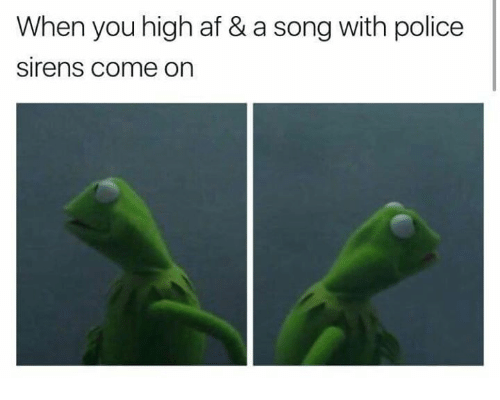 Af, Memes, and Police: When you high af & a song with police  Sirens Come On