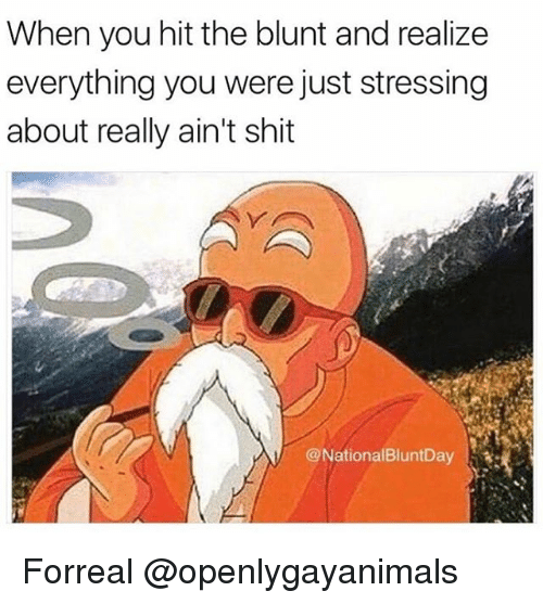 Shit, Weed, and Marijuana: When you hit the blunt and realize  everything you were just stressing  about really ain't shit  @NationalBluntDay.1刔 Forreal @openlygayanimals