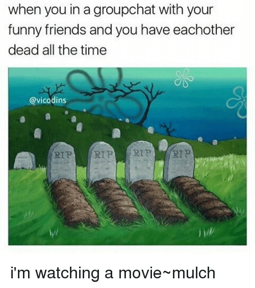 Memes, Vicodin, and All the Time: when you in a groupchat with your  funny friends and you have eachother  dead all the time  @vicodins  RIP  RIP RIP i'm watching a movie~mulch