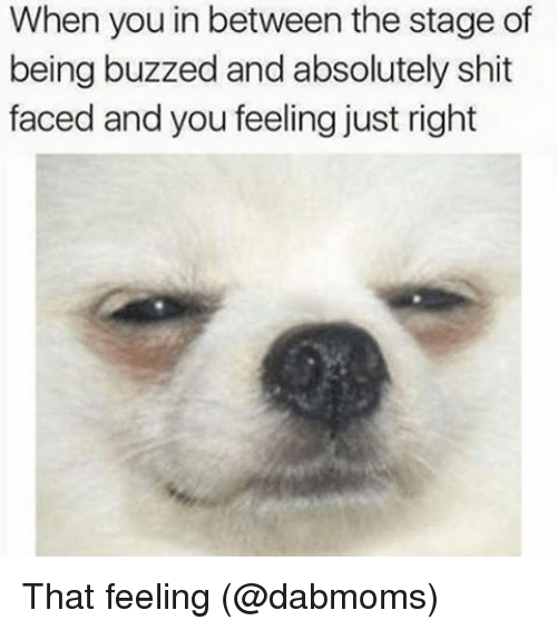 Memes, Shit, and 🤖: When you in between the stage of  being buzzed andabsolutely shit  faced and you feeling just right That feeling (@dabmoms)