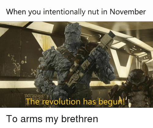 Begum: When you intentionally nut in November  o1  The revolution has begum!' To arms my brethren