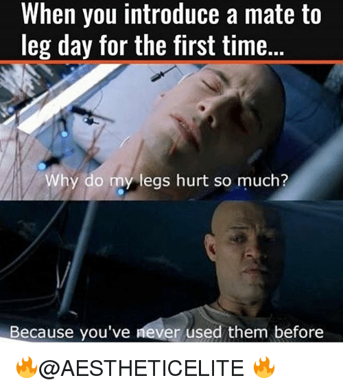 Legs Hurt: When you introduce a mate to  leg day for the first time.  Why do my legs hurt so much?  Because you've never used them before 🔥@AESTHETICELITE 🔥