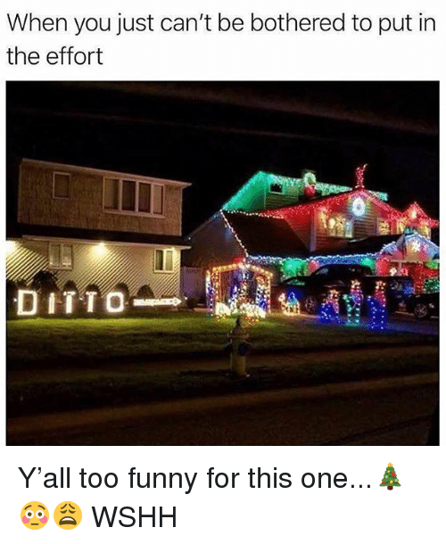 Funny, Memes, and Wshh: When you just can't be bothered to put in  the effort  DITTO Y'all too funny for this one...🎄😳😩 WSHH