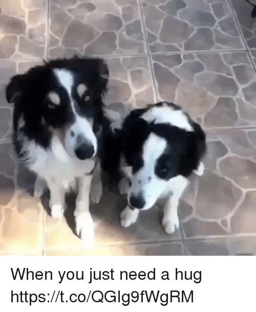 Relatable, You, and Hug: When you just need a hug https://t.co/QGIg9fWgRM