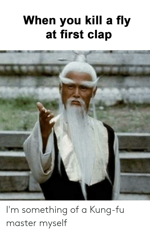 kung fu master: When you kill a fly  at first clap I'm something of a Kung-fu master myself