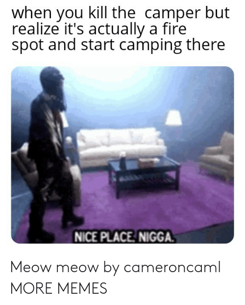 Camper: when you kill the camper but  realize it's actually a fire  spot and start camping there  NICE PLACE NIGGA. Meow meow by cameroncaml MORE MEMES