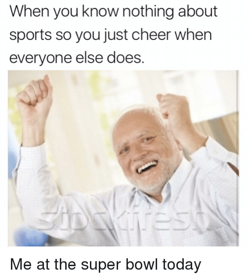 Memes, Super Bowl, and 🤖: When you know nothing about  sports so you just cheer when  everyone else does Me at the super bowl today