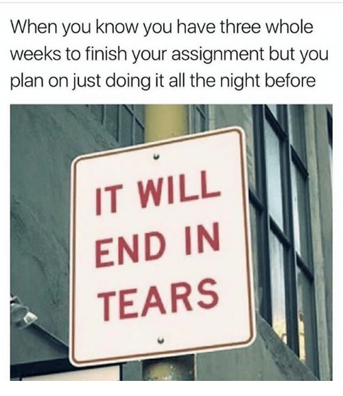 Memes, All The, and 🤖: When you know you have three whole  weeks to finish your assignment but you  plan on just doing it all the night before  IT WILL  END IN  TEARS