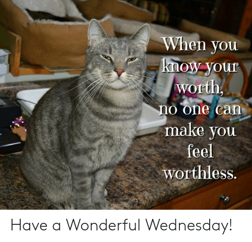 Have A Wonderful Wednesday: When you  know-your  worth  no one can  make you  feel  worthless. Have a Wonderful Wednesday!