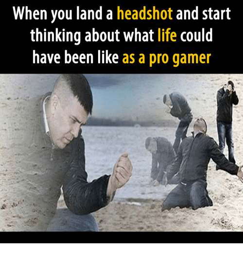 Life, Video Games, and Pro: When you land a headshot and start  thinking about what life could  have been like  as a pro gamer
