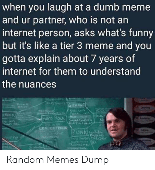 An Internet: when you laugh at a dumb meme  and ur partner, who is not an  internet person, asks what's funny  but it's like a tier 3 meme and you  gotta explain about 7 years of  internet for them to understand  the nuances Random Memes Dump