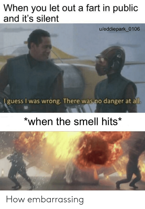 Silent: When you let out a fart in public  and it's silent  u/eddiepark_0106  I guess I was wrong. There was no danger at all.  *when the smell hits* How embarrassing