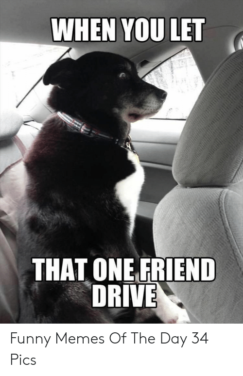 That One Friend: WHEN YOU LET  THAT ONE FRIEND  DRIVE Funny Memes Of The Day 34 Pics