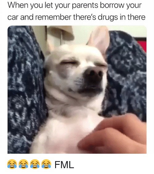 FML: When you let your parents borrow your  car and remember there's drugs in there 😂😂😂😂 FML