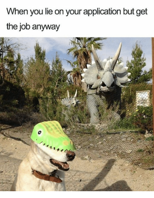 Memes, 🤖, and Job: When you lie on your application but get  the job anyway