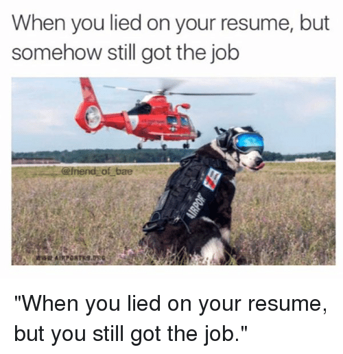 consequences lying resume