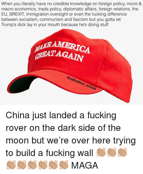 Immigration: When you literally have no credible knowledge on foreign policy, micro &  macro economics, trade policy, diplomatic affairs, foreign relations, the  EU, BREXIT, immigration oversight or even the fucking difference  between socialism, communism and fascism but you gotta let  Trump's dick lay in your mouth because he's doing stuff  GREAT AGAIN  @oafnation actual China just landed a fucking rover on the dark side of the moon but we're over here trying to build a fucking wall 👏🏽👏🏽👏🏽👏🏽👏🏽👏🏽👏🏽👏🏽👏🏽 MAGA