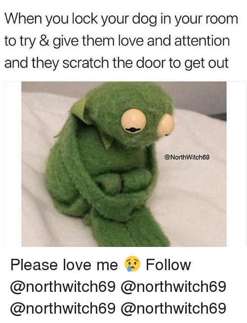 Love, Memes, and Scratch: When you lock your dog in your room  to try & give them love and attention  and they scratch the door to get out  @NorthWitch69 Please love me 😢 Follow @northwitch69 @northwitch69 @northwitch69 @northwitch69