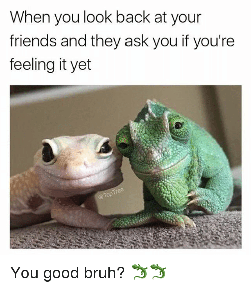 Bruh, Friends, and Memes: When you look back at your  friends and they ask you if you're  feeling it yet  @Top You good bruh? 🦎🦎